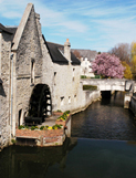 Thumbnail image for Americans in Bayeux — Normandy, France